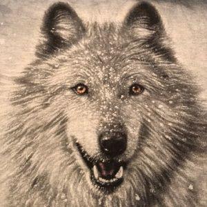 3eb4bfab4 the Mountain Tops | Epic Wolf Tie Dye Tee | Poshmark